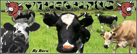 pilote62 Sign-vaches
